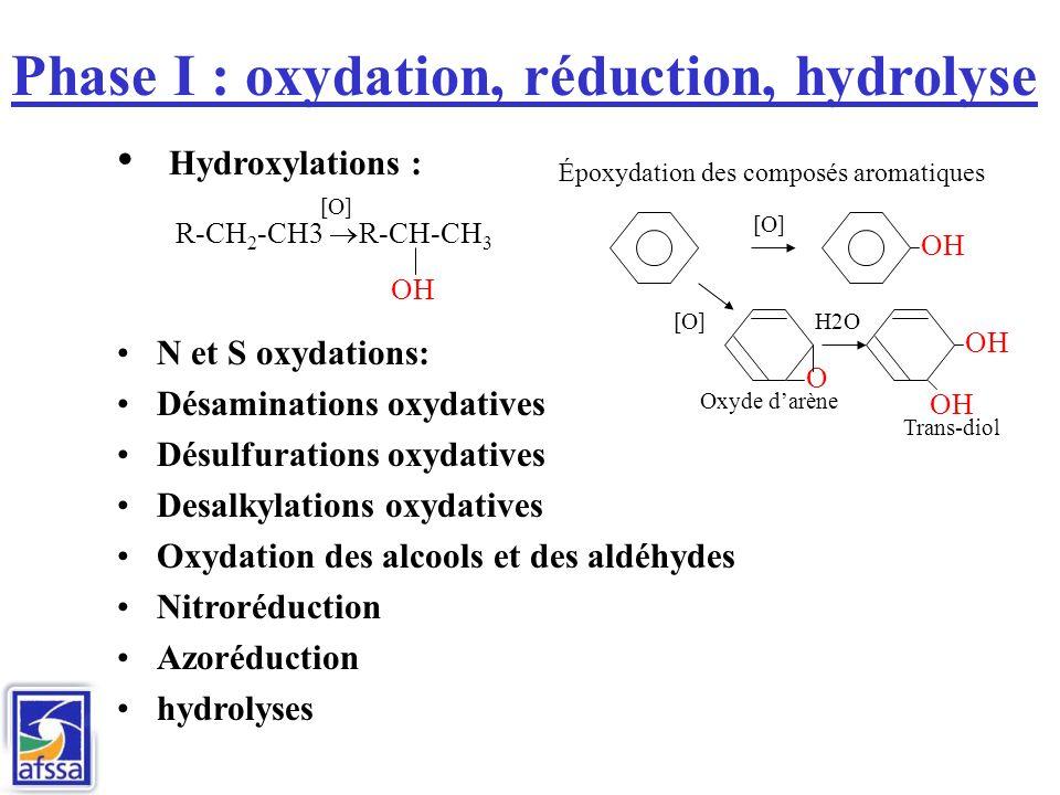 Phase I : oxydation, réduction, hydrolyse