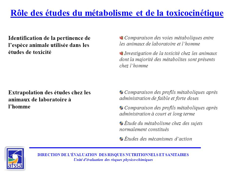 Rôle des études du métabolisme et de la toxicocinétique