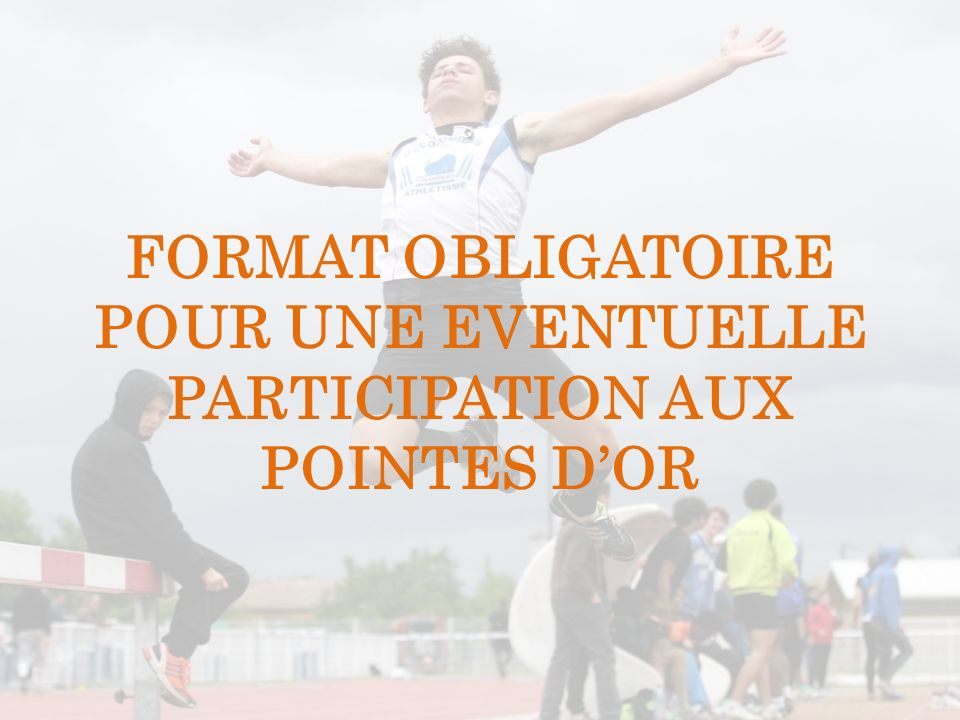 FORMAT OBLIGATOIRE POUR UNE EVENTUELLE PARTICIPATION AUX POINTES D'OR