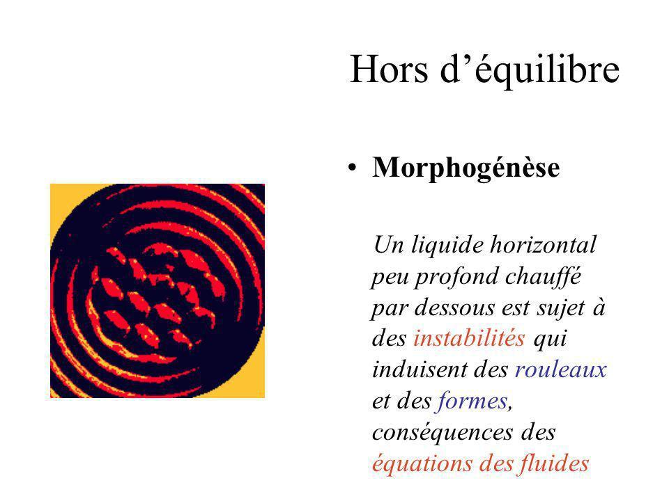 Hors d'équilibre Morphogénèse