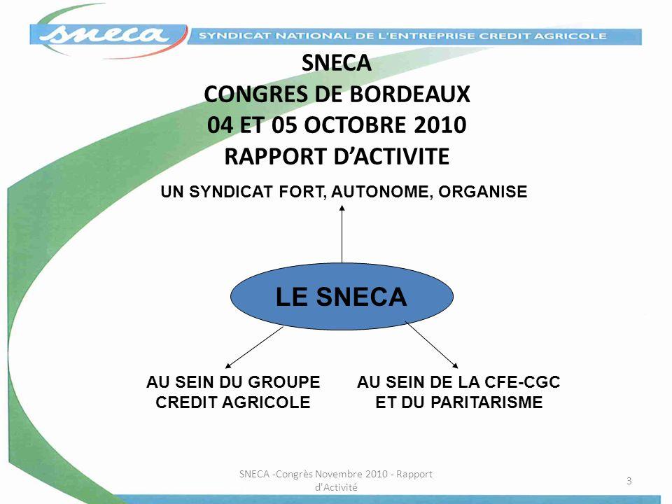 SNECA CONGRES DE BORDEAUX 04 ET 05 OCTOBRE 2010 RAPPORT D'ACTIVITE
