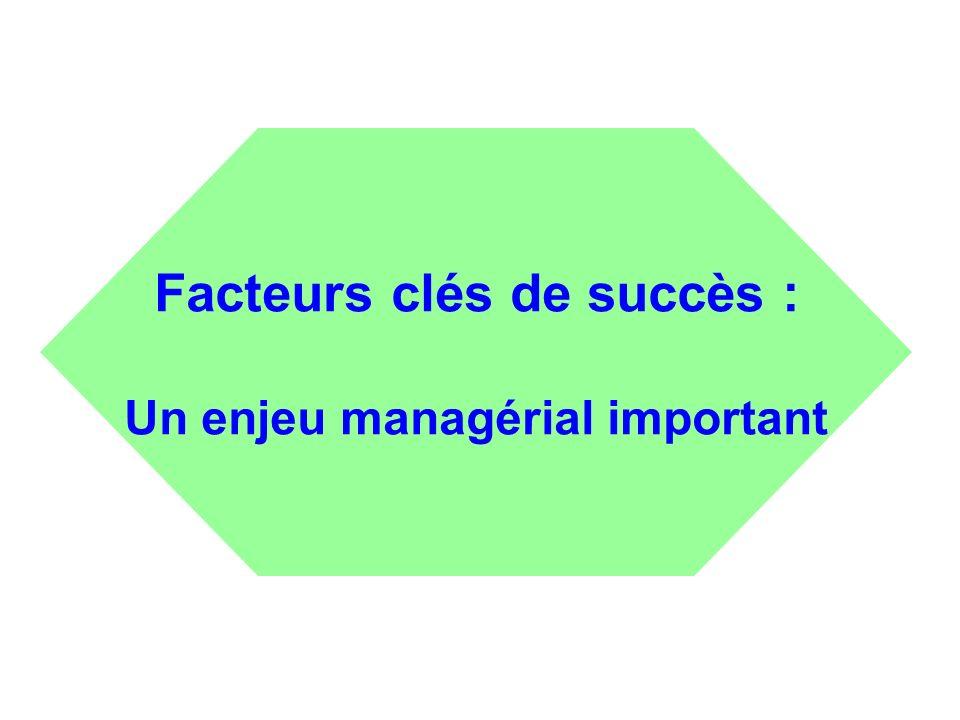 Facteurs clés de succès : Un enjeu managérial important