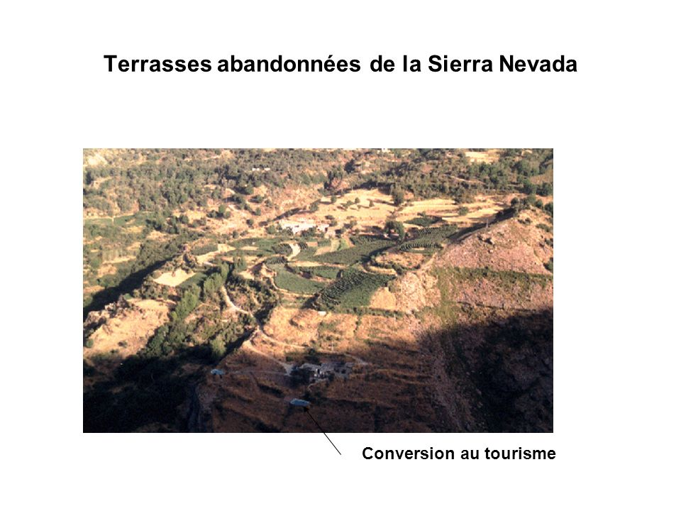 Terrasses abandonnées de la Sierra Nevada