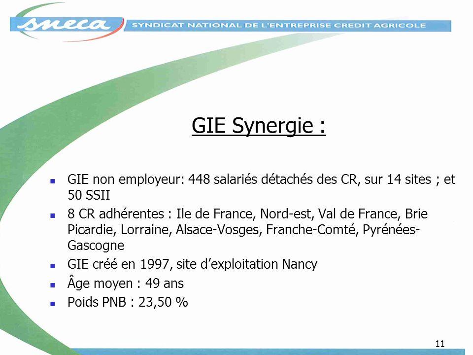 GIE Synergie : GIE non employeur: 448 salariés détachés des CR, sur 14 sites ; et 50 SSII.