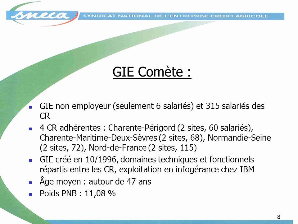 GIE Comète : GIE non employeur (seulement 6 salariés) et 315 salariés des CR.