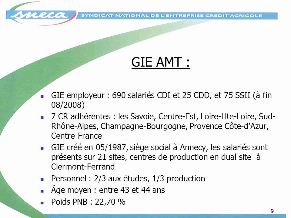 GIE AMT : GIE employeur : 690 salariés CDI et 25 CDD, et 75 SSII (à fin 08/2008)
