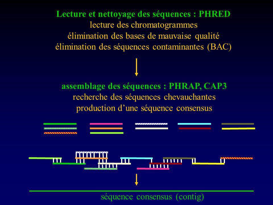 Lecture et nettoyage des séquences : PHRED
