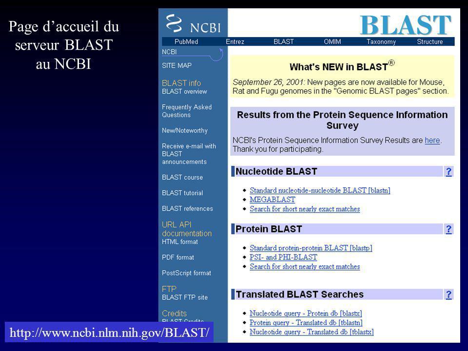 Page d'accueil du serveur BLAST au NCBI