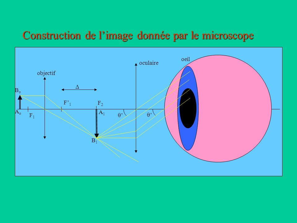 Construction de l'image donnée par le microscope