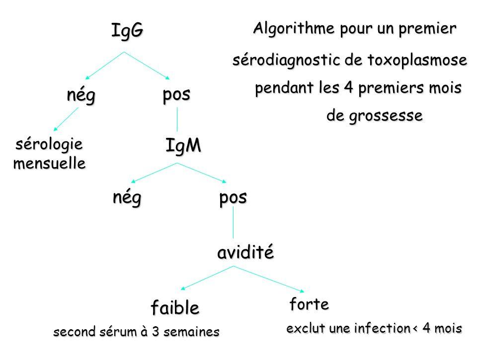 IgG nég pos IgM nég pos avidité faible Algorithme pour un premier