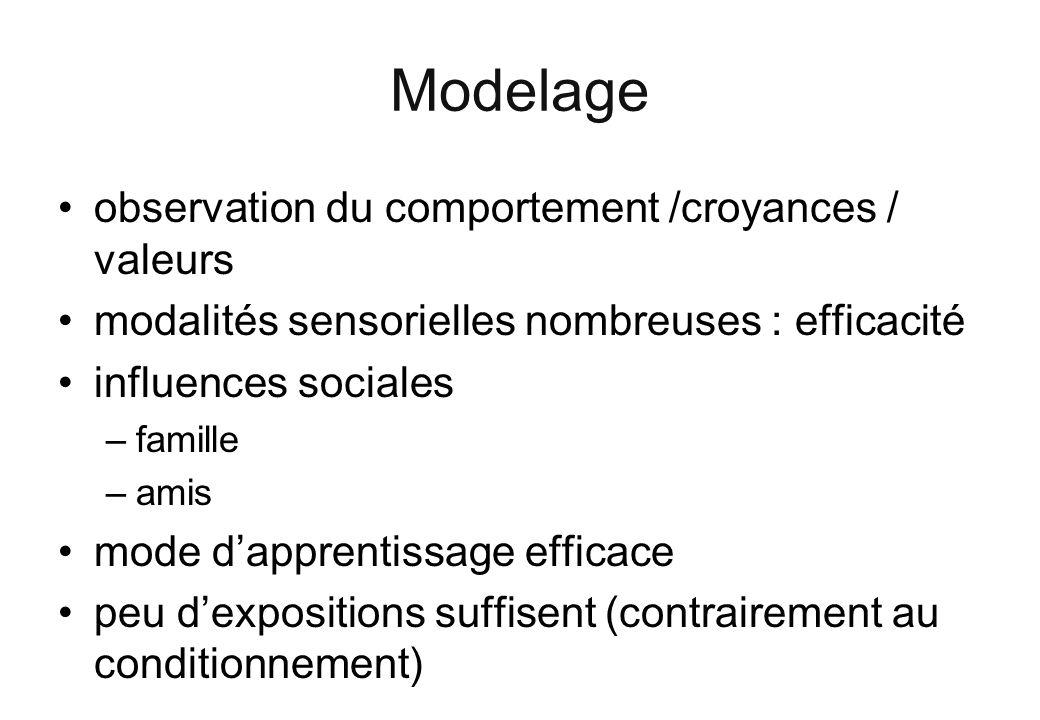 Modelage observation du comportement /croyances / valeurs