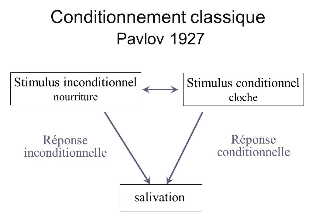 Conditionnement classique Pavlov 1927