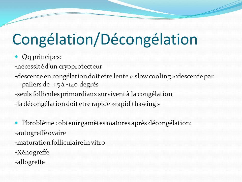 Congélation/Décongélation