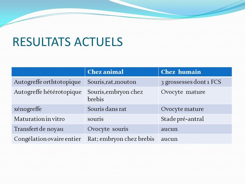 RESULTATS ACTUELS Chez animal Chez humain Autogreffe orthtotopique