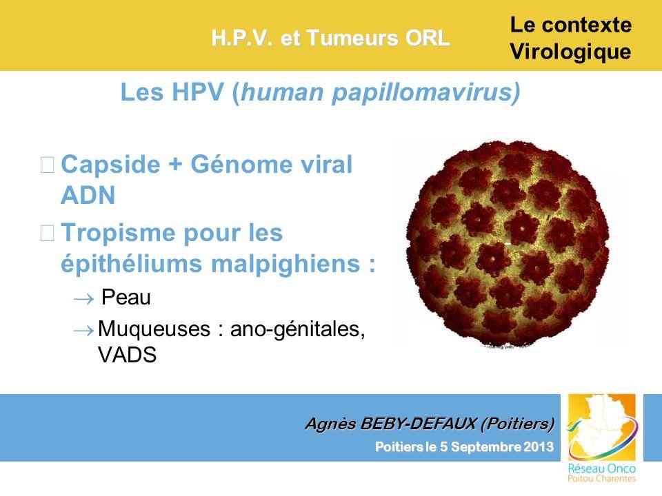 Le contexte Virologique