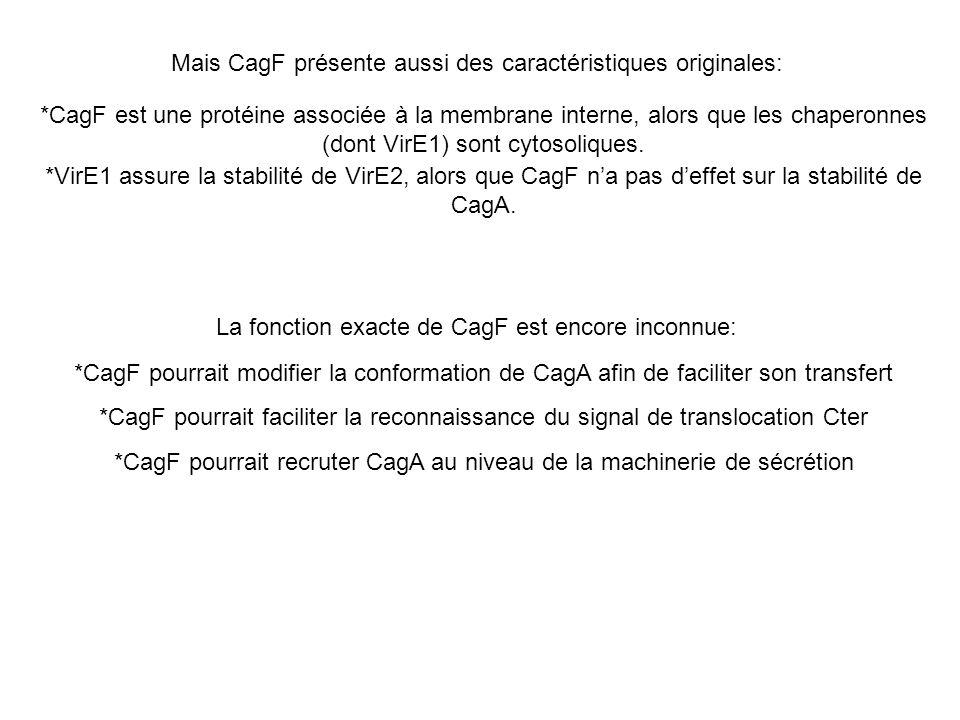 Mais CagF présente aussi des caractéristiques originales: