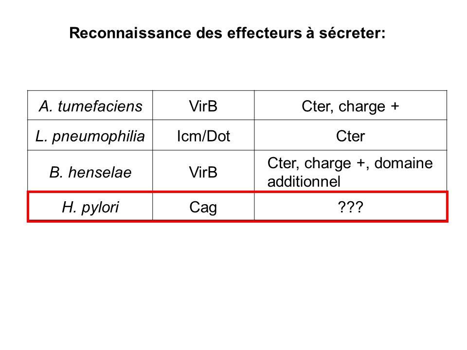 Reconnaissance des effecteurs à sécreter:
