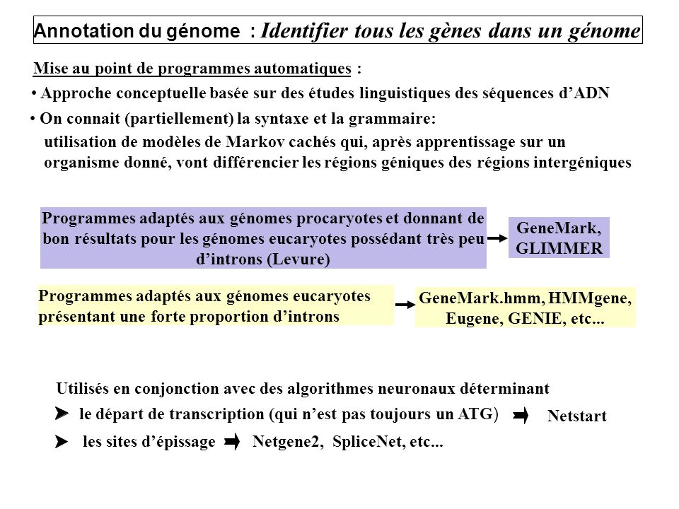 GeneMark.hmm, HMMgene, Eugene, GENIE, etc...