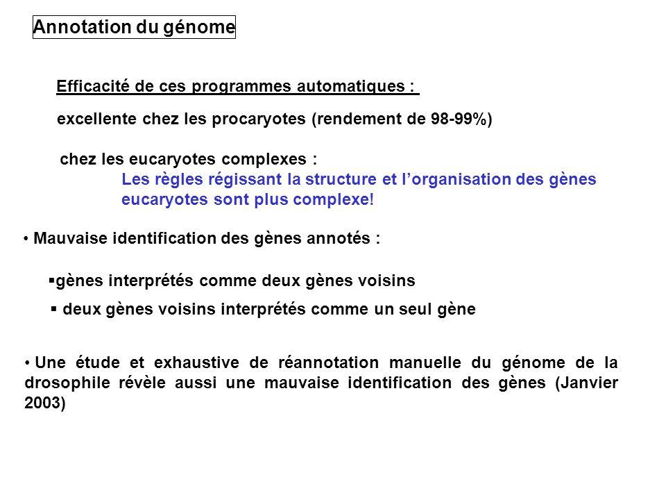 Annotation du génome Efficacité de ces programmes automatiques :