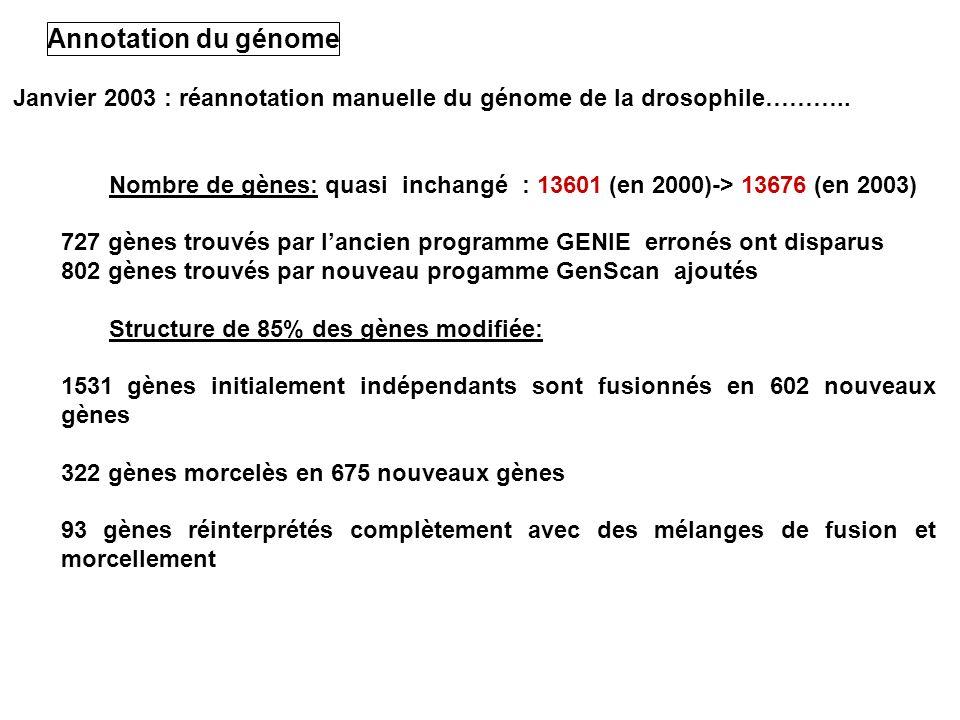 Annotation du génomeJanvier 2003 : réannotation manuelle du génome de la drosophile………..