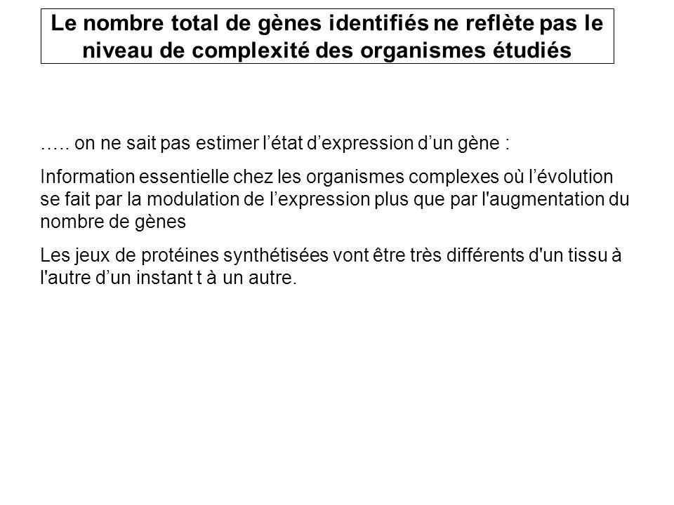 Le nombre total de gènes identifiés ne reflète pas le niveau de complexité des organismes étudiés