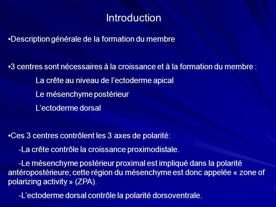 Introduction Description générale de la formation du membre