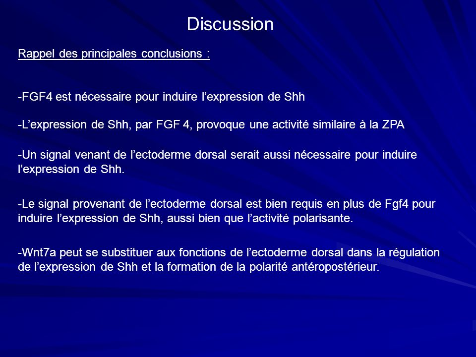 Discussion Rappel des principales conclusions :