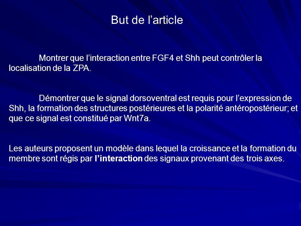 But de l'article Montrer que l'interaction entre FGF4 et Shh peut contrôler la localisation de la ZPA.