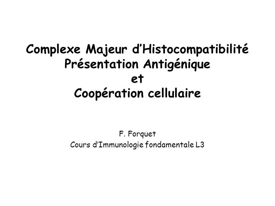 F. Forquet Cours d'Immunologie fondamentale L3