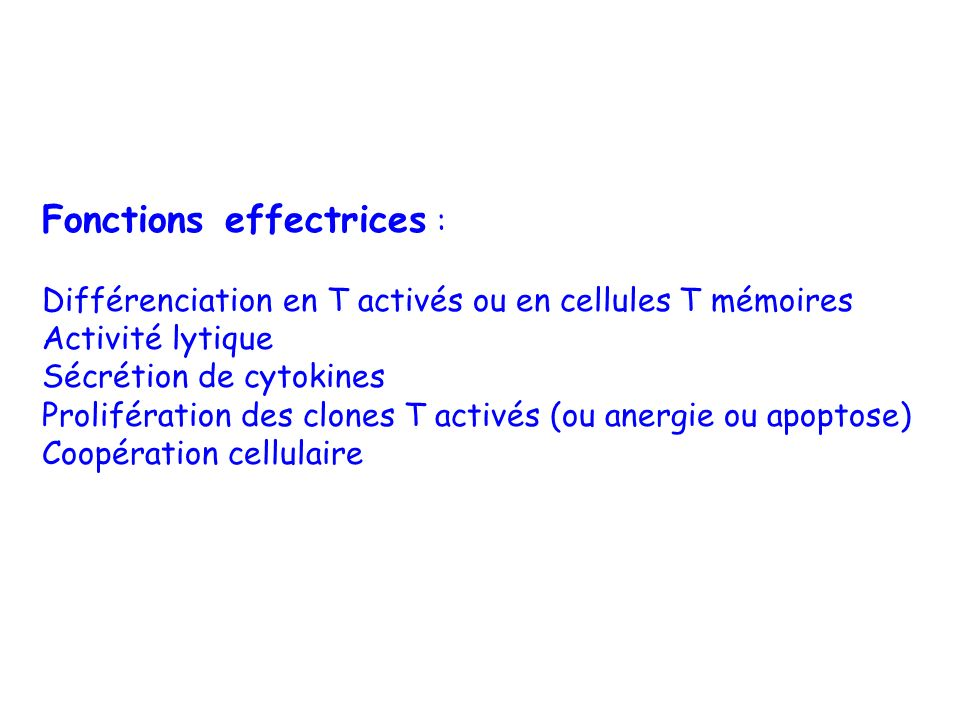Fonctions effectrices :
