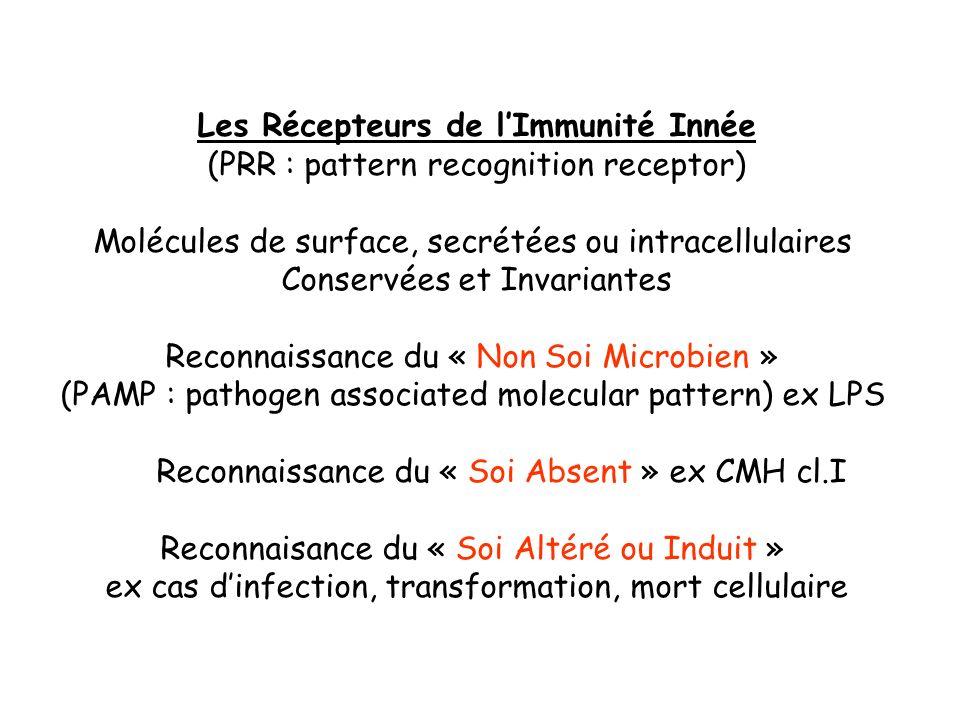 Les Récepteurs de l'Immunité Innée