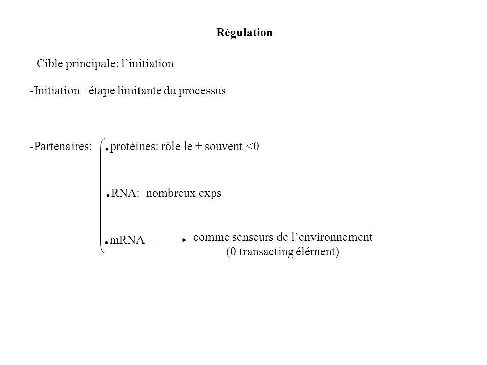 .RNA: nombreux exps Régulation Cible principale: l'initiation