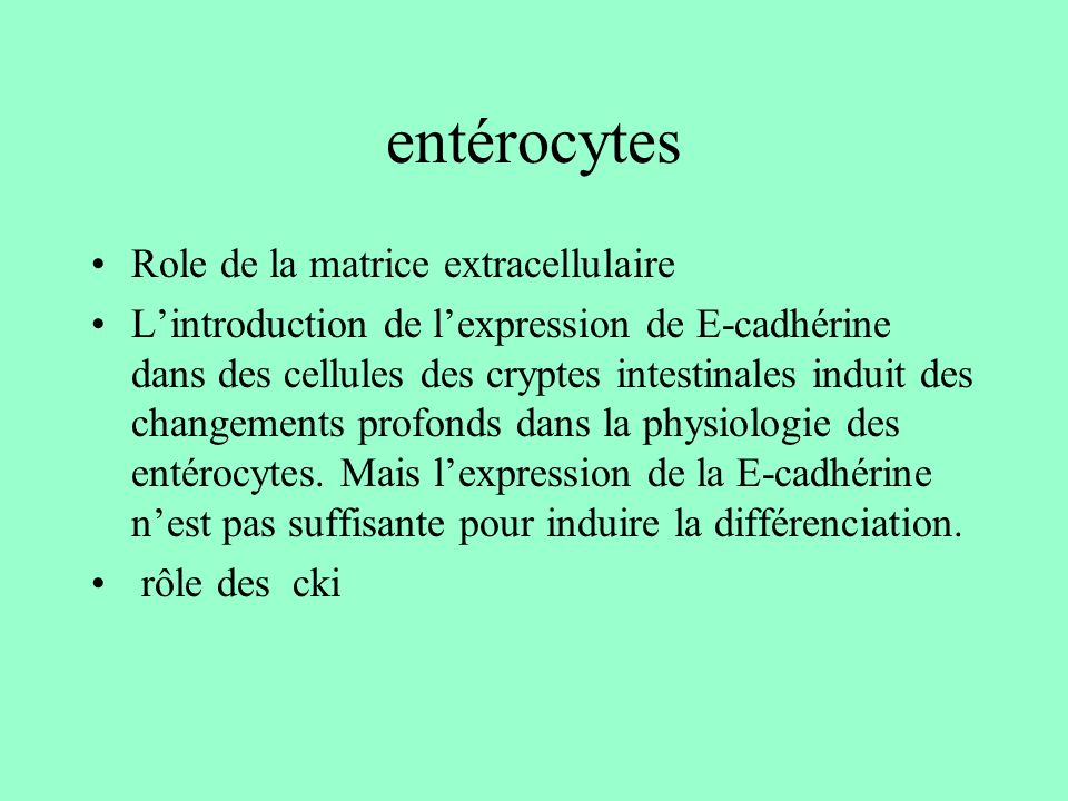 entérocytes Role de la matrice extracellulaire