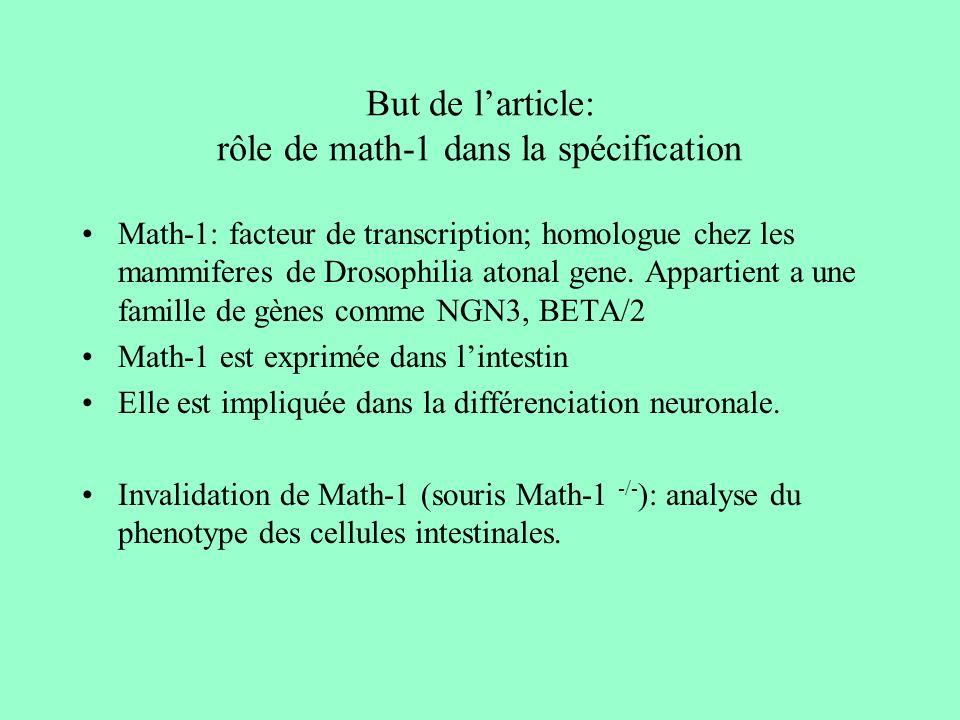But de l'article: rôle de math-1 dans la spécification