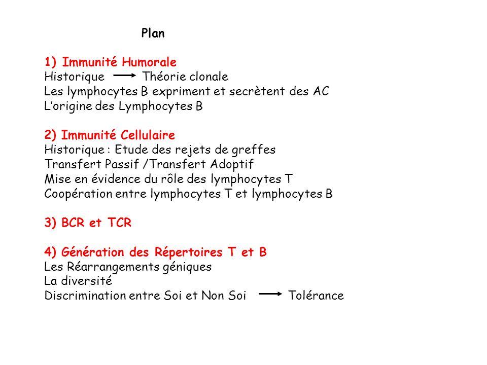 Plan Immunité Humorale. Historique Théorie clonale. Les lymphocytes B expriment et secrètent des AC.