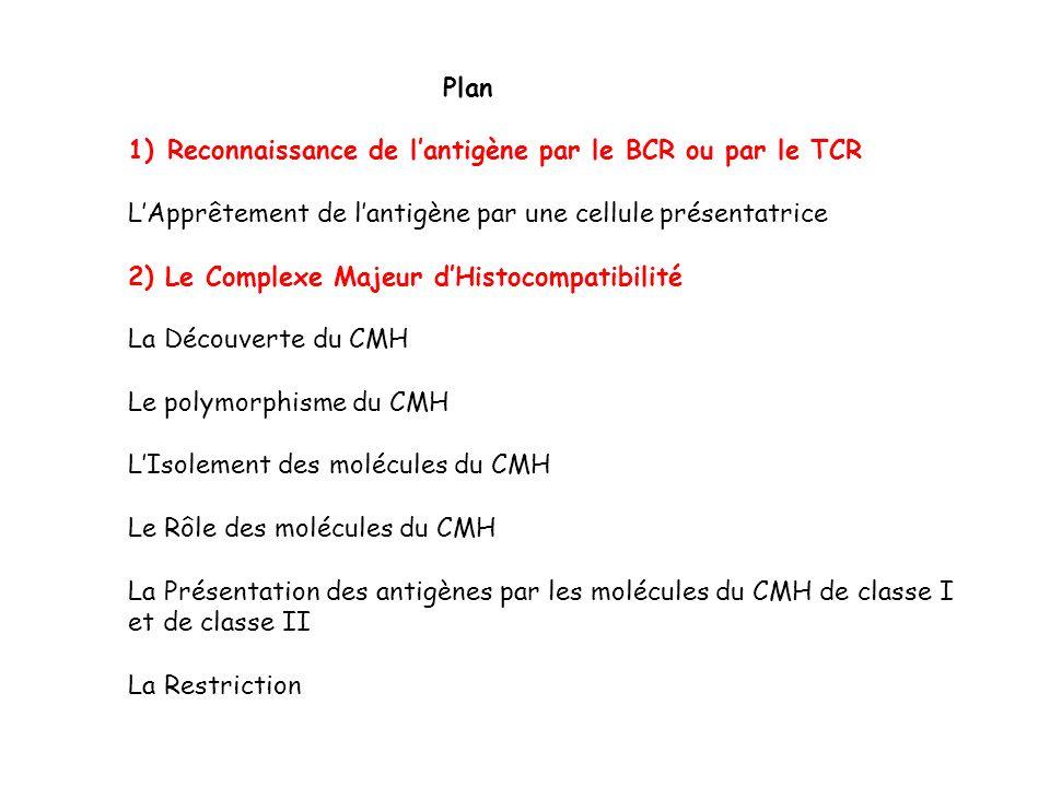 Plan Reconnaissance de l'antigène par le BCR ou par le TCR. L'Apprêtement de l'antigène par une cellule présentatrice.