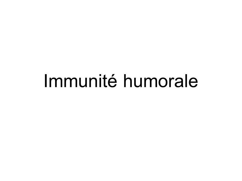 Immunité humoraleL'immunité humorale est médiée par les molécules secrétées par les LB : les anticorps.