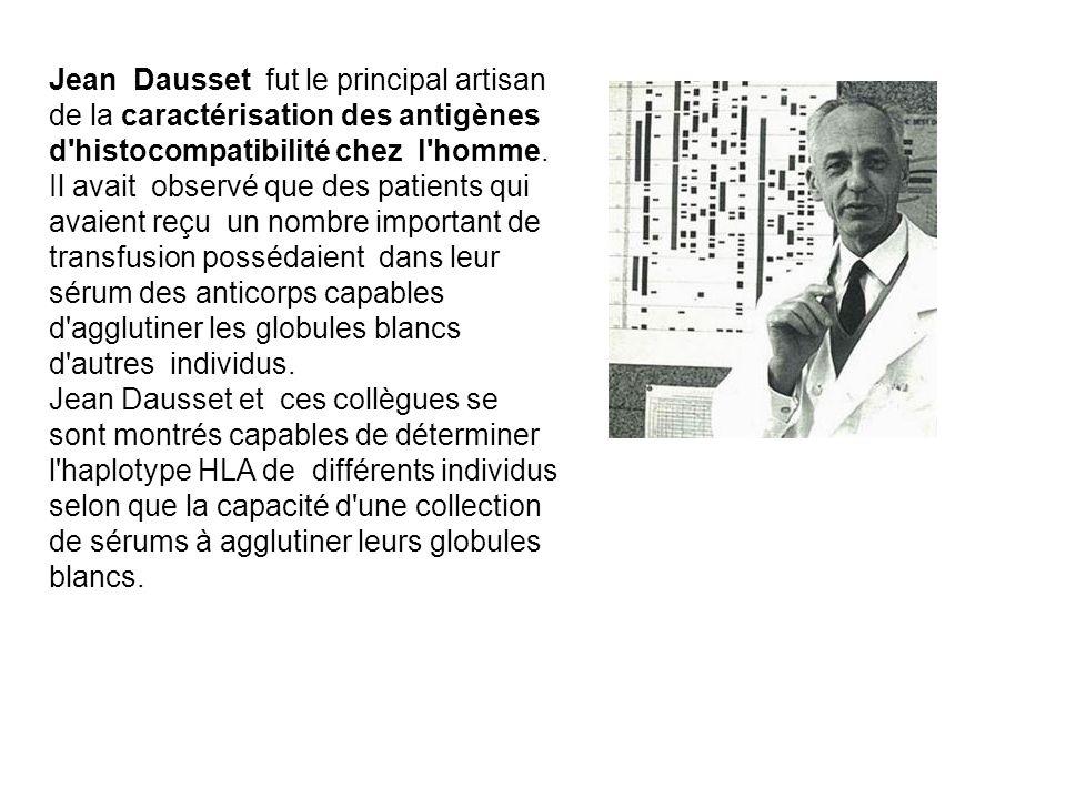 Jean Dausset fut le principal artisan de la caractérisation des antigènes