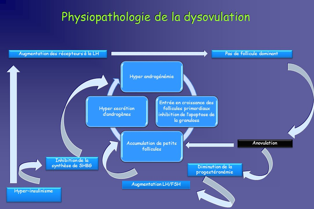 Physiopathologie de la dysovulation