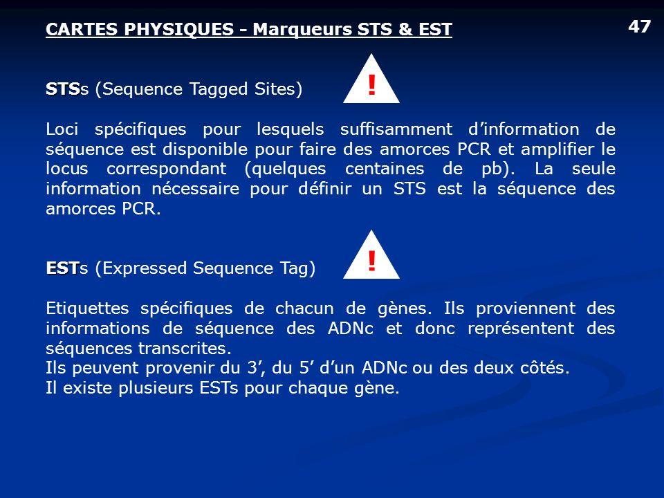 ! ! 47 CARTES PHYSIQUES - Marqueurs STS & EST