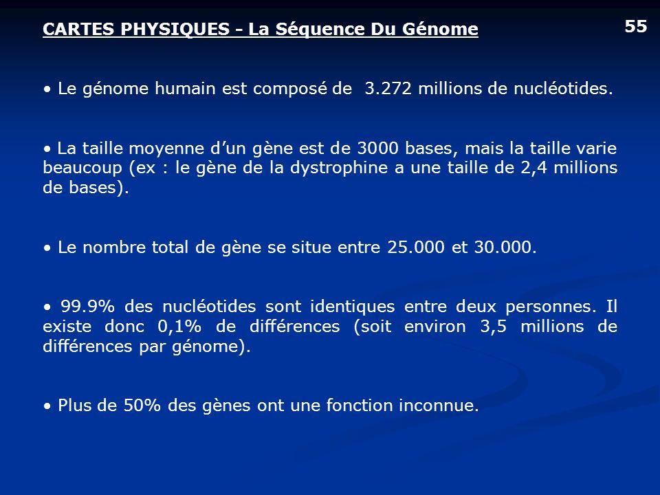 CARTES PHYSIQUES - La Séquence Du Génome