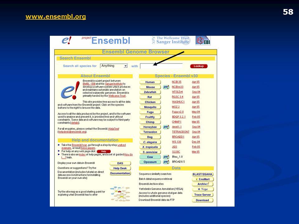 58 www.ensembl.org