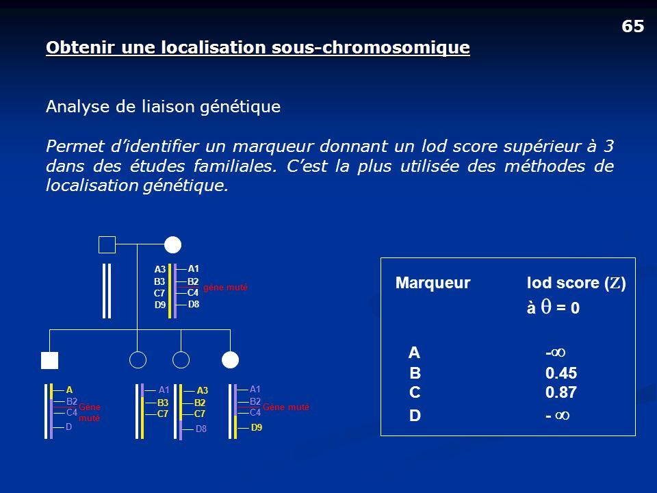 Obtenir une localisation sous-chromosomique