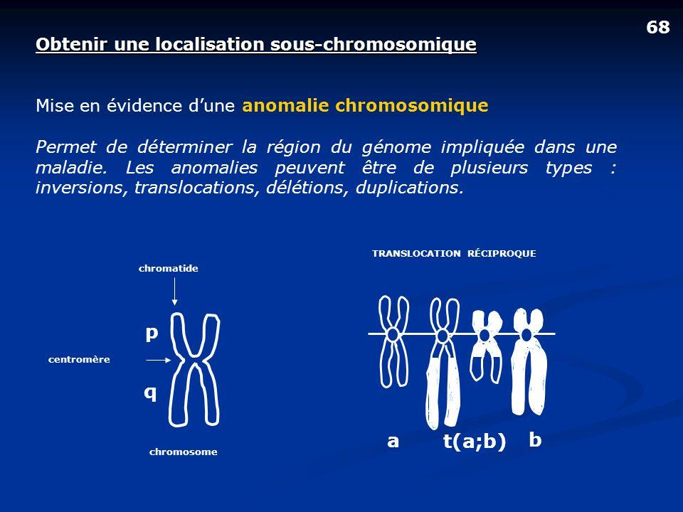 p q a t(a;b) b 68 Obtenir une localisation sous-chromosomique