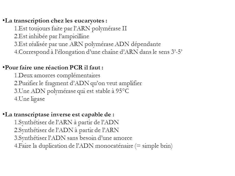 La transcription chez les eucaryotes :