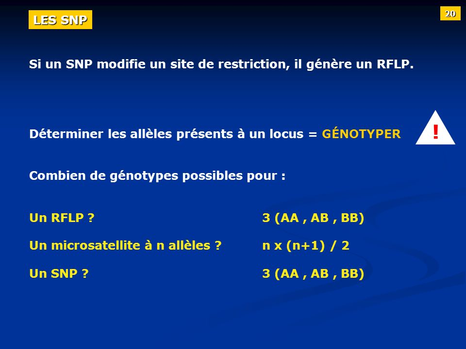 ! LES SNP Si un SNP modifie un site de restriction, il génère un RFLP.