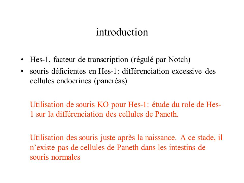 introduction Hes-1, facteur de transcription (régulé par Notch)