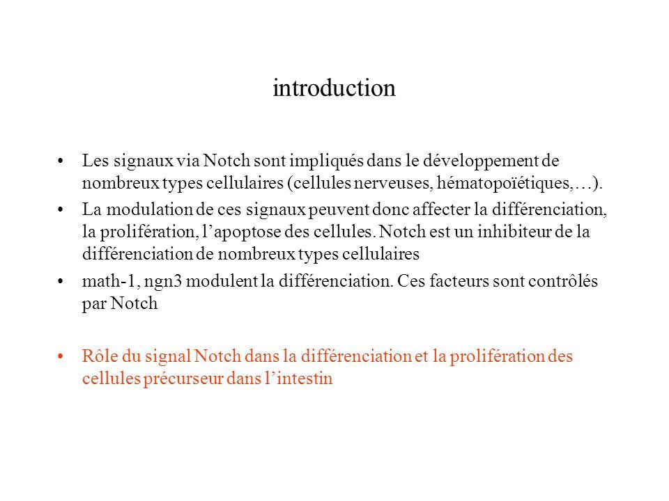 introduction Les signaux via Notch sont impliqués dans le développement de nombreux types cellulaires (cellules nerveuses, hématopoïétiques,…).