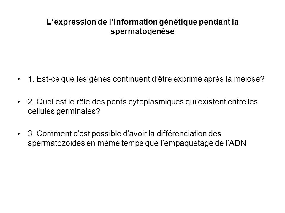 L'expression de l'information génétique pendant la spermatogenèse