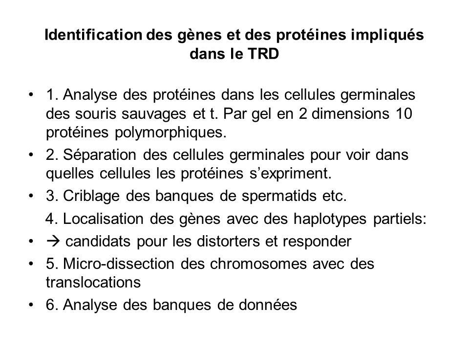 Identification des gènes et des protéines impliqués dans le TRD